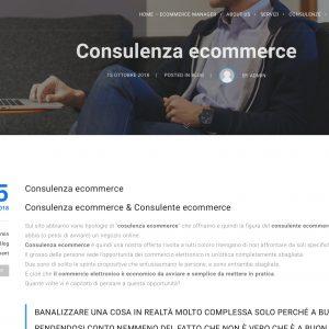 consulente ecommerce